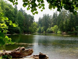 El estanque Donoper, en los Bosques de Teutoburgo.